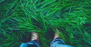 Breathwork Exercise For Grounding